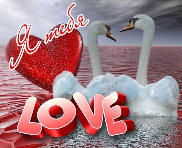 Картинки с признаниями в любви для любимой